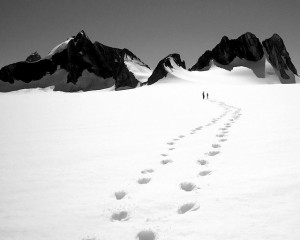 Foot prints in the snow. Don't walk alone. Find the help you need with trauma counseling servies, family counseling, anxiety therapy, mood disorder counseling